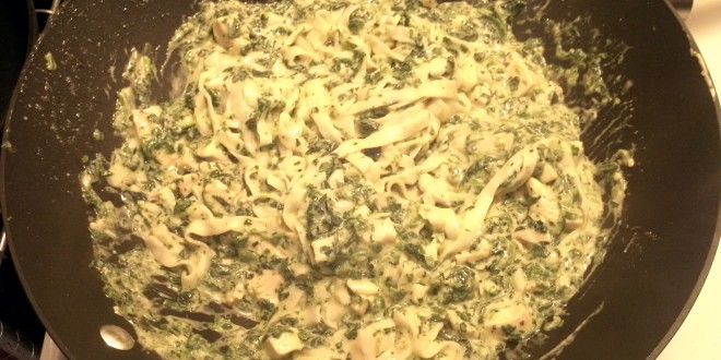 Faux Pasta Quest: Shirataki Chicken Alfredo