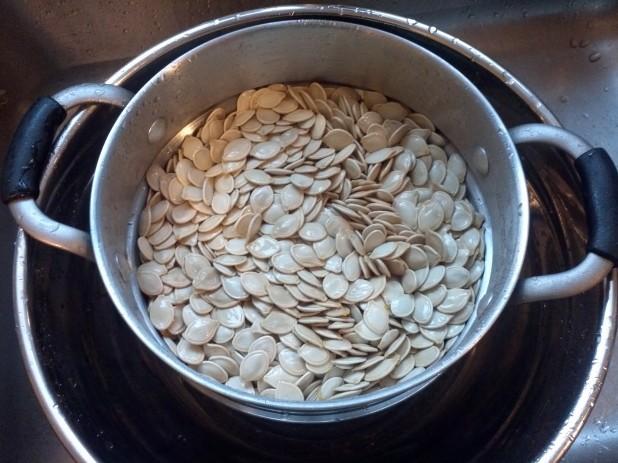 Rinsing seeds