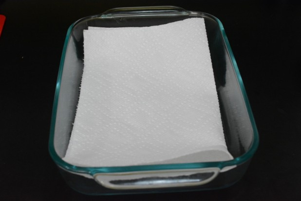 Drying Dish