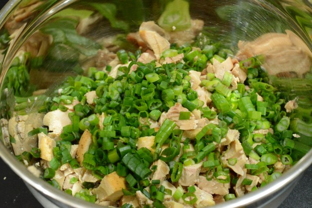Chicken and Green Onions