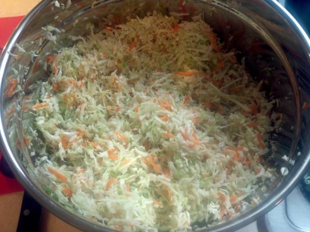 Carrots in Cabbage