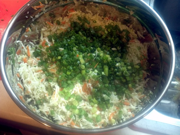 Slaw with green onions