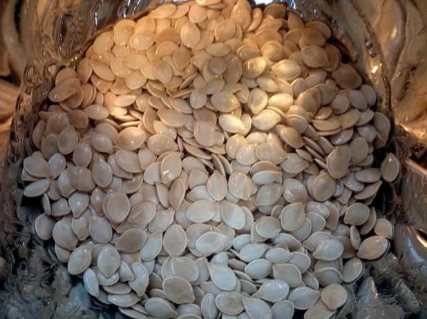 Seasoned Seeds