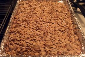 Finished Pumpkin Seeds